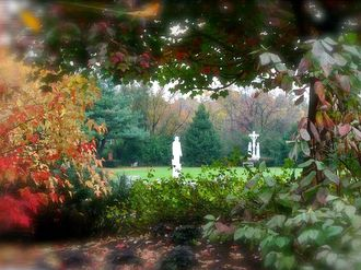 trees and statues