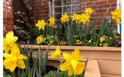 Looking beyond the longest Lent