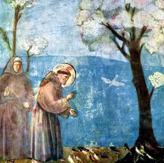 st francis fresco