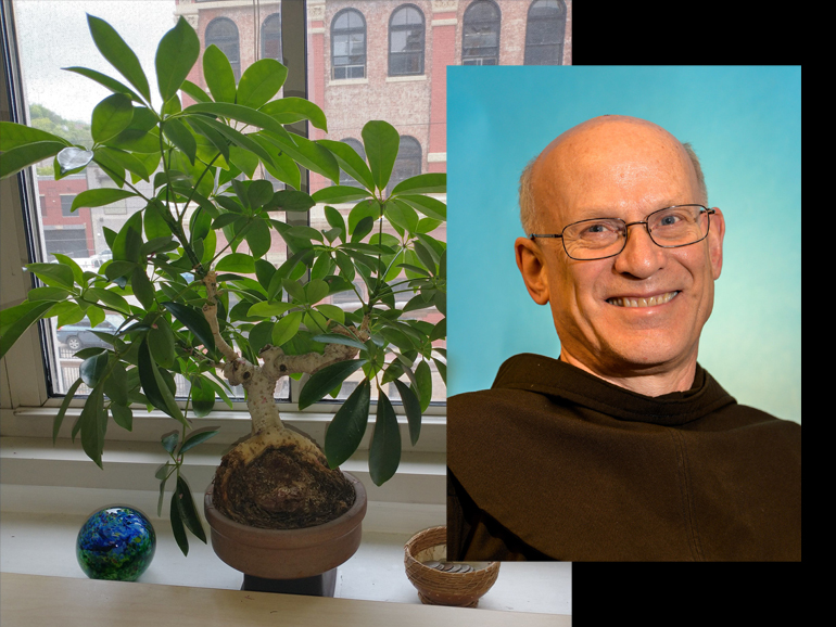 friar and plant